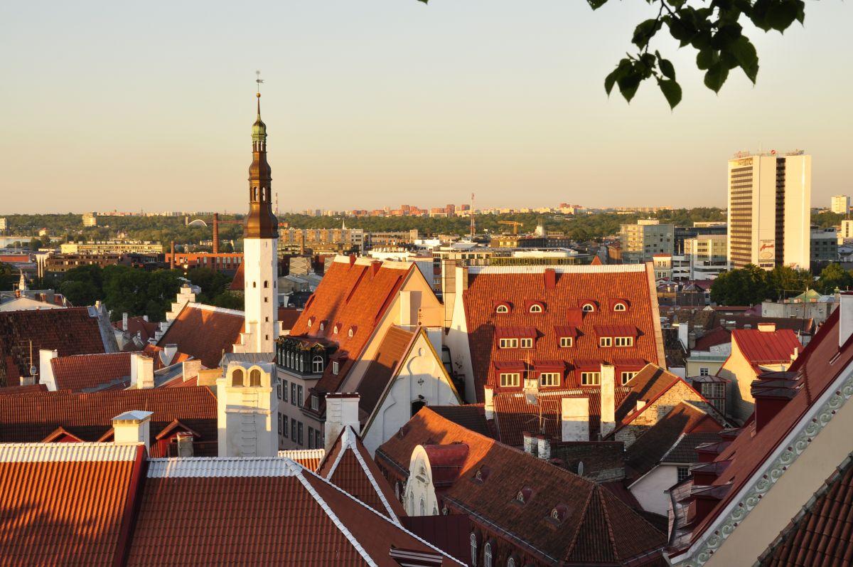 Old town Tallinn in the summer