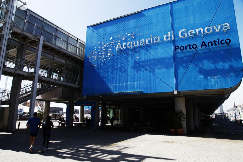 review of acquario di genova porto antico