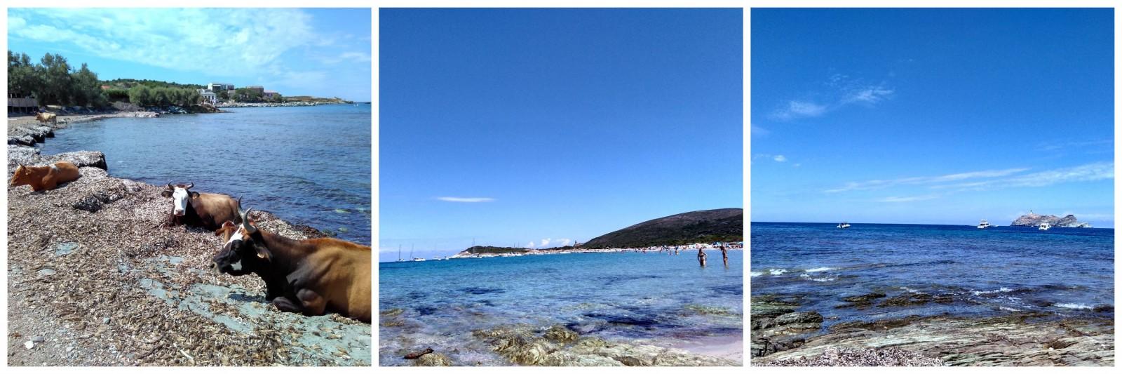 Cap Corso Corsica France