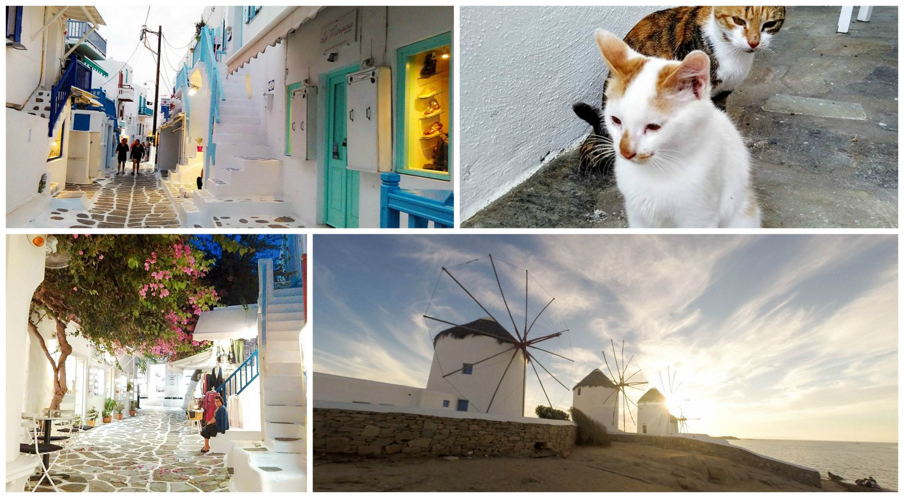 luxury shopping sightseeing mykonos